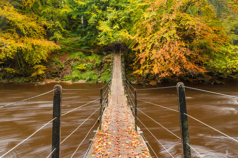 An autumnal image of the River Allen in Northumberland, a slow exposure blurring the water.
